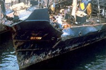 1980 whales SSCS history sierra5 damage2