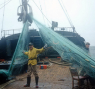 1992 Driftnet-recovered-2-