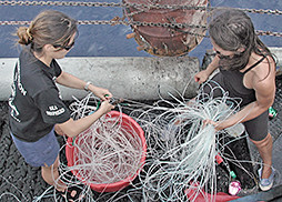 Sea Shepherd crewmembers organize confiscated longline.
