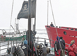 Canadian Coast Guard gets between Sea Shepherd and the sealers.