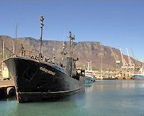 The Farley Mowat in Cape Town